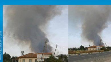 Photo of Güney'de başlayan yangın ara bölgeye ulaştı
