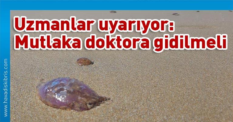 Peki, denizanası çarpması durumunda ne yapılmalı? Denizanası sokması nasıl tedavi edilir?