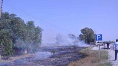 Photo of Güney Lefkoşa'da da yangın