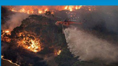 Photo of İran'ın güneybatısında 1100 hektar orman yandı