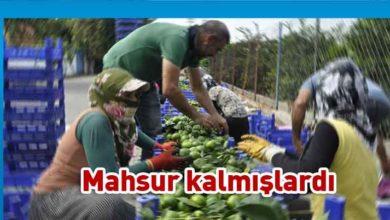 Photo of Mevsimlik işçiler ülkeden ayrıldı