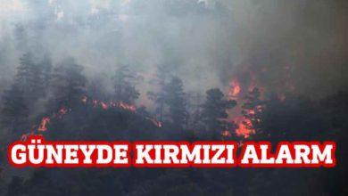 Photo of Ormanlarda yangın tehlikesi