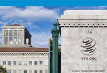 Photo of DTÖ: Küresel ticarette rekor düşüş en kötü senaryonun altında kalacak