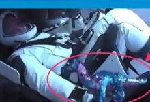 Photo of Astronotlar uzaya neden dinozor götürdü?