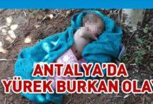Photo of Antalya'da yeni doğmuş bebek cami avlusuna terkedildi