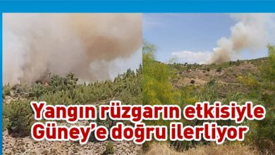 Photo of Lefke Aplıç Sınır Kapısı'nda yangın