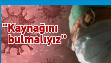 Photo of Openshaw: Aşı işe yaramayabilir