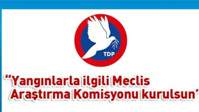 Photo of TDP önerdi, CTP destek verdi