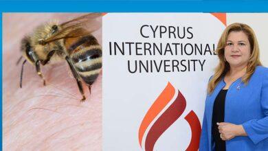 Photo of Arı ve böcek sokmalarına dikkat