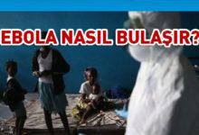 Photo of DSÖ: Ebola salgını yeniden başladı