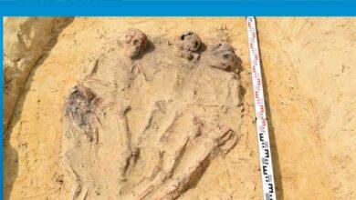 Photo of Polonya'da ağzında sikke bulunan onlarca çocuk iskeleti ortaya çıkarıldı