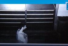 Photo of Camide uyuyan adamın cebinden 750 TL çalındı