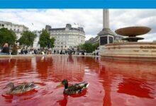 Photo of Trafalgar Meydanı'nda hayvan hakları protestosu: 2 kişi tutuklandı