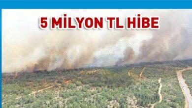Photo of Türkiye'den KKTC ormanlarına 5 milyon TL'lik hibe