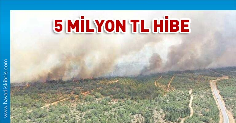 Türkiye orman hibe