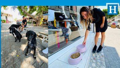 Photo of Girne Belediyesi'nden 1 Kap Mama 1 Kap Su için çağrı