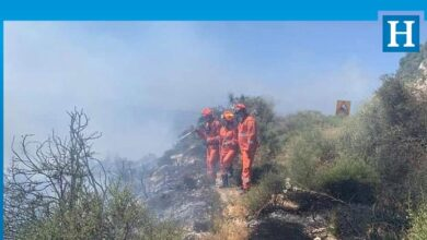 Photo of Güney hafta sonu yangınlarla boğuştu