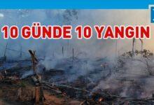 Photo of Bolsonaro artan Amazon yangınlarını yalanladı