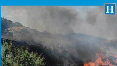 Photo of Esentepe'de yangın: Kuru ot ve çöpler yandı