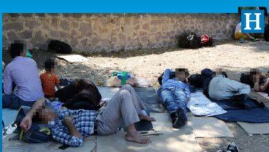 Photo of Güney'de 12 bin 410 mülteci koruma statüsünde