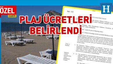 Photo of Plajlarda verilen hizmetler için ücretler belirlendi