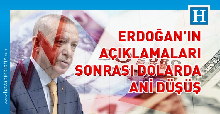 Erdoğan Dolar