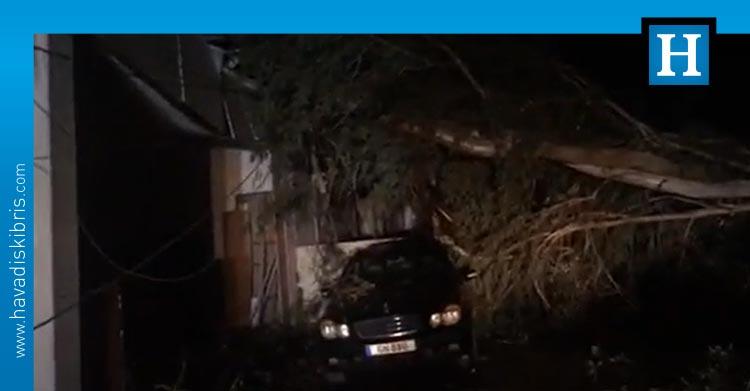 gemikonağı-aracın-üstüne-ağaç-düştü