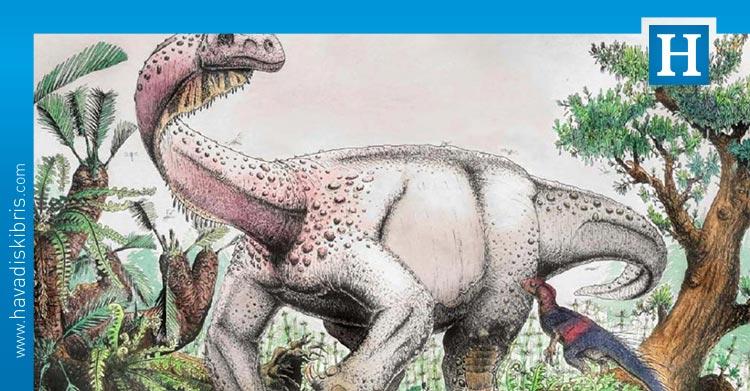 yaşamış en büyük kara hayvanının fosilleri