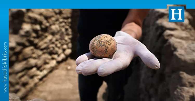 bin yıllık yumurta
