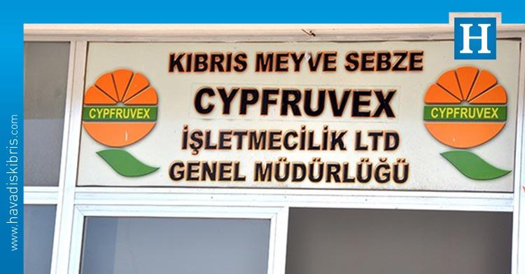 Cypfruvex