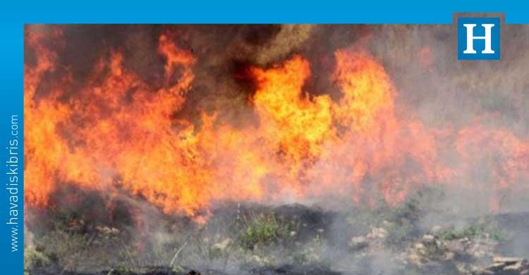 KKTC orman yangınları