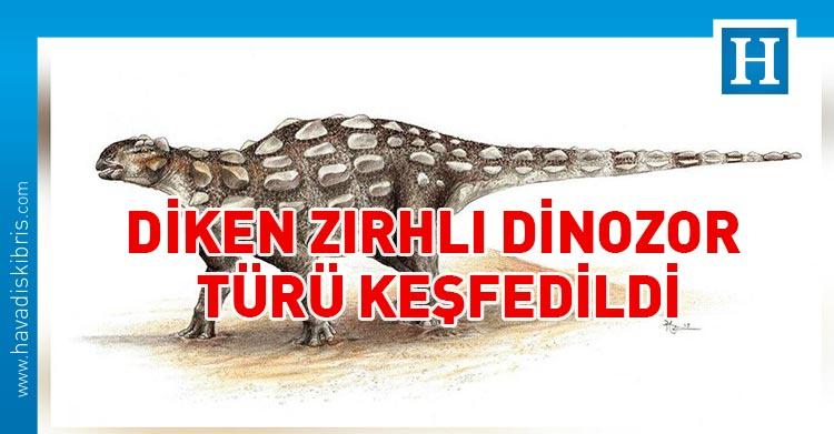 diken zırhlı dinozor türü keşfedildi